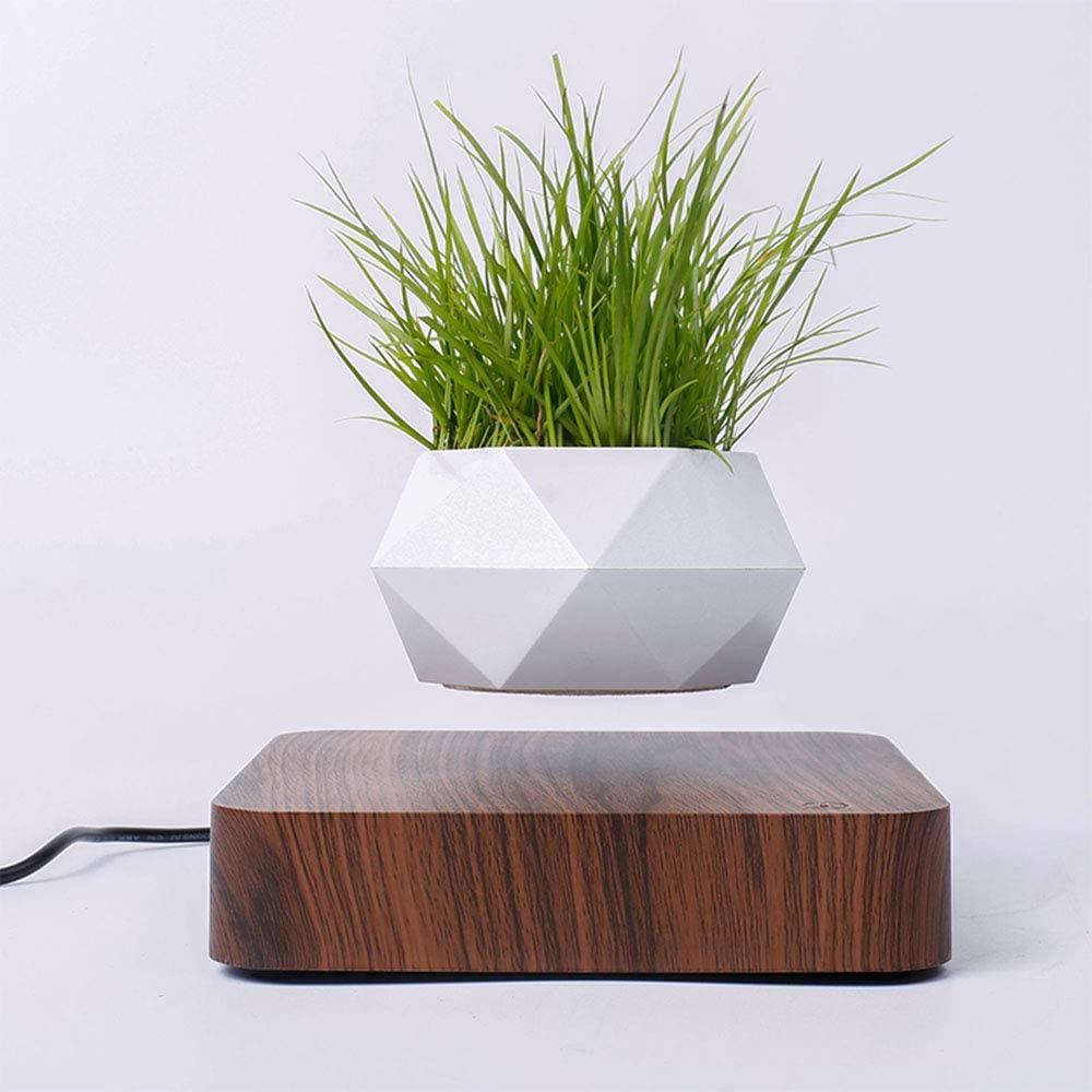 Levitirajuća Air Bonsai Pot, 630 kn