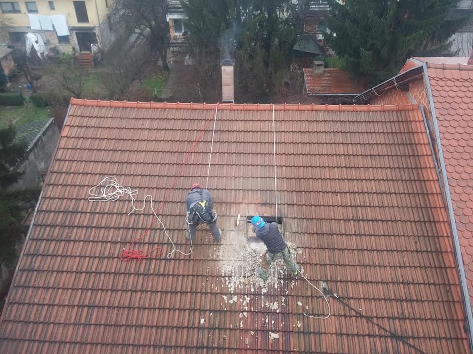 ninja krovnjače on the roof