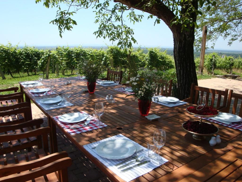 vuglec breg terasa pogled vinograd