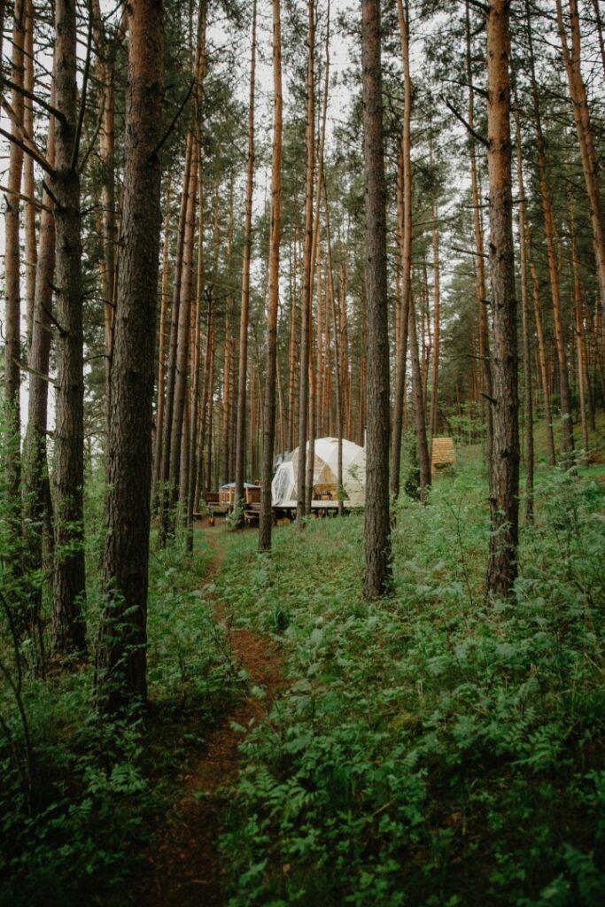 """""""Asalnų stovyklavietėje""""_Ignalina_Asalnai camping site_forest domes"""