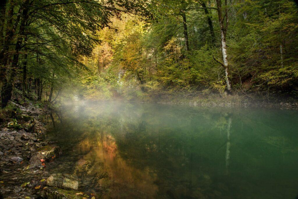 Izvor rijeke Kupe 2